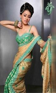 Fashionable Indian sari
